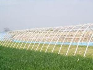 河南新乡:现代农业赴粤招商签约六千多万元