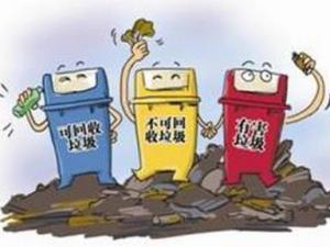 """""""生活垃圾无害化处理及再利用""""项目在南京进行技术推广"""
